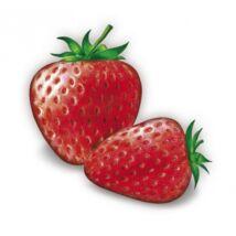 Alma-SZAMÓCA 100%-os, rostos natúr gyümölcslé 3 l