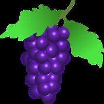 Alma-KÉKSZŐLŐ 100%-os, rostos natúr gyümölcslé 3 l
