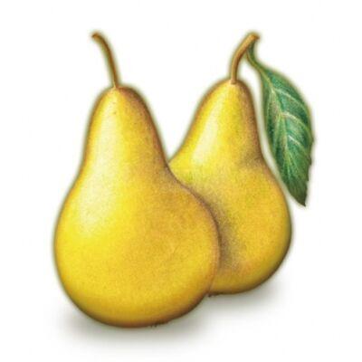 Alma-KÖRTE 100%-os, rostos natúr gyümölcslé 5 l