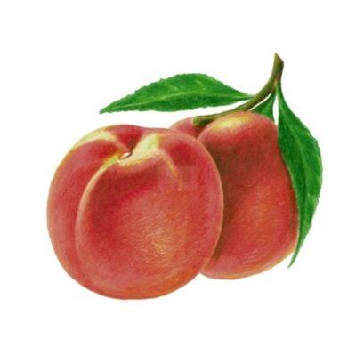 Alma-ŐSZIBARACK 100%-os, rostos natúr gyümölcslé 5 l