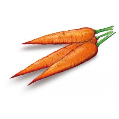 SÁRGARÉPA - 100%-os rostos zöldséglé 3 l